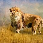 King of The Serengeti by Brian Tarr