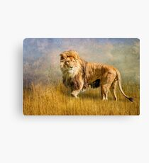 King of The Serengeti Canvas Print