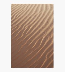 Desert Photographic Print