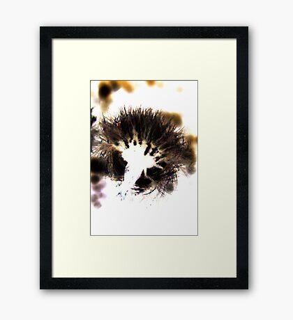 Dandelion Done Digital Framed Print