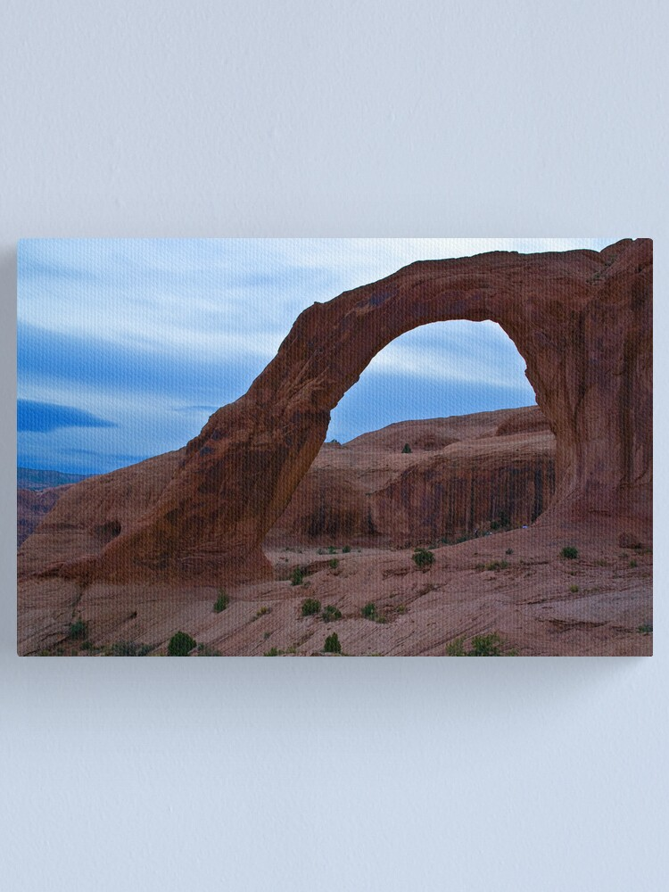 Alternate view of Looking West Canvas Print