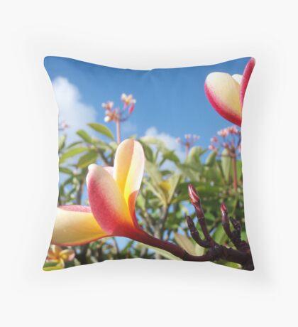 Plumeria in Pupukea Throw Pillow