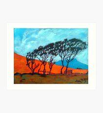 Mayo Trees, Ballycroy, Ireland Art Print