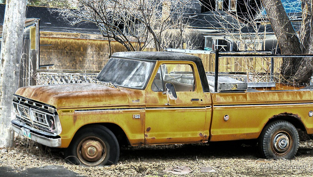 old ford by Cheryl Dunning