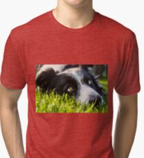 the look of a border collie Tri-blend T-Shirt