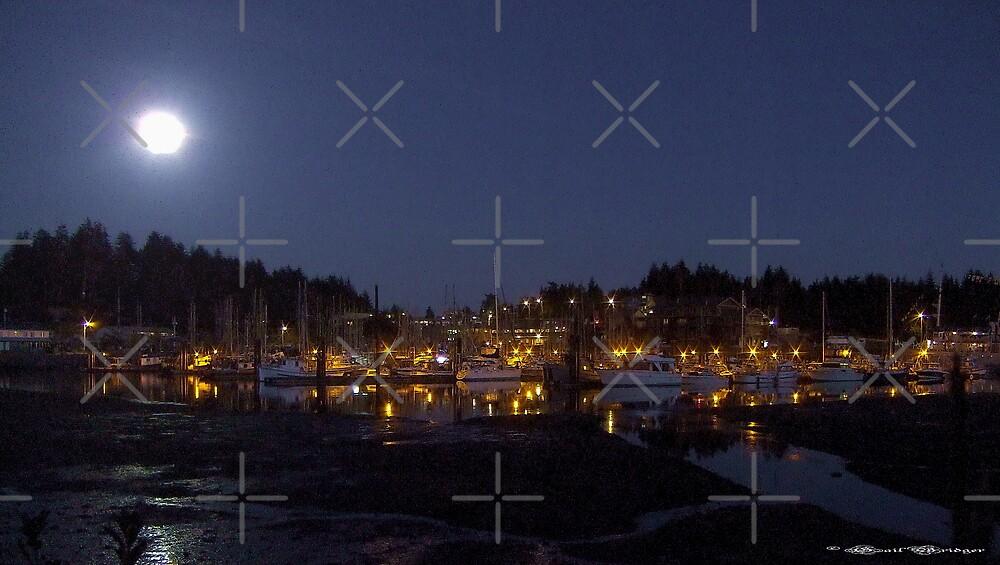 Ucluelet Harbour Lights by Gail Bridger