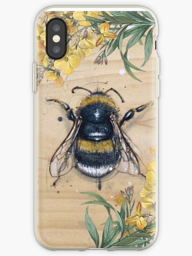 Vintage Honey Bee Anatomy Design With Daisies Iphone Cases