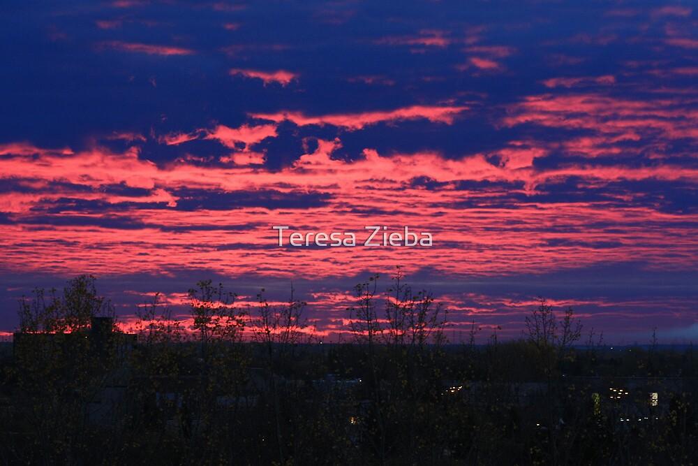 Morning Sky  by Teresa Zieba