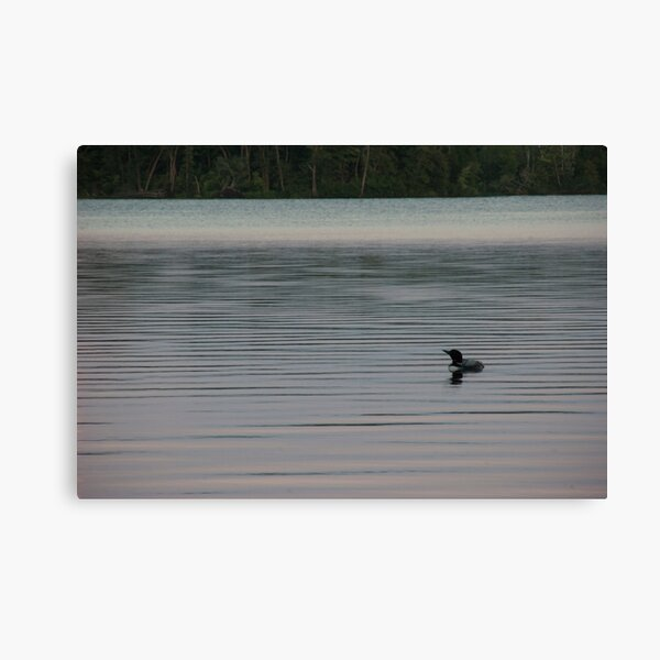 Loon on the Lake Canvas Print