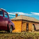 In the Field FJ  by Dave  Hartley