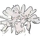 Star Magnolia Sketch 9710 by Candy Paull