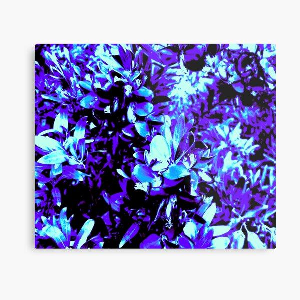 PURPLE BLUE FREEZE Metal Print