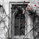 Rose Window by Yampimon