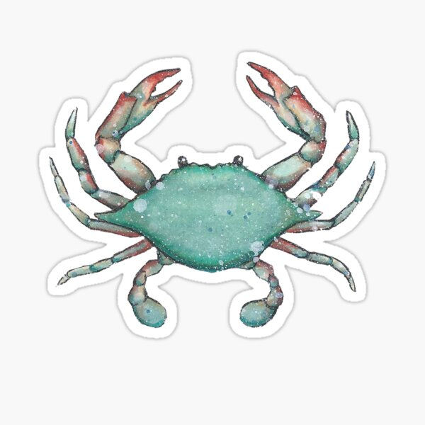 Maryland Chesapeake Bay Marine Wildlife Blue Crab Design Sticker