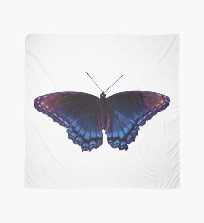 Blue Wing Butterfly Open Wings Scarf