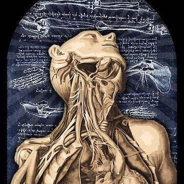 Anatomy by PsychoProjectTS