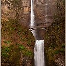 Multnomah Falls in January by Bryan D. Spellman