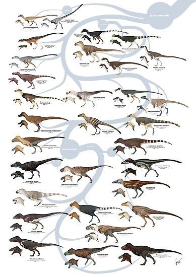 Tyrannosauroid Dinosaurs by SerpenIllus