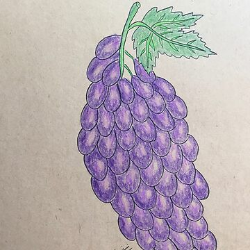 Grapes by ranjaniart