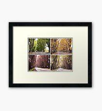 Seasons of The Avenue - Bacchus Marsh Framed Print