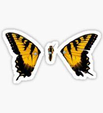Paramore Brand New Eyes Sticker