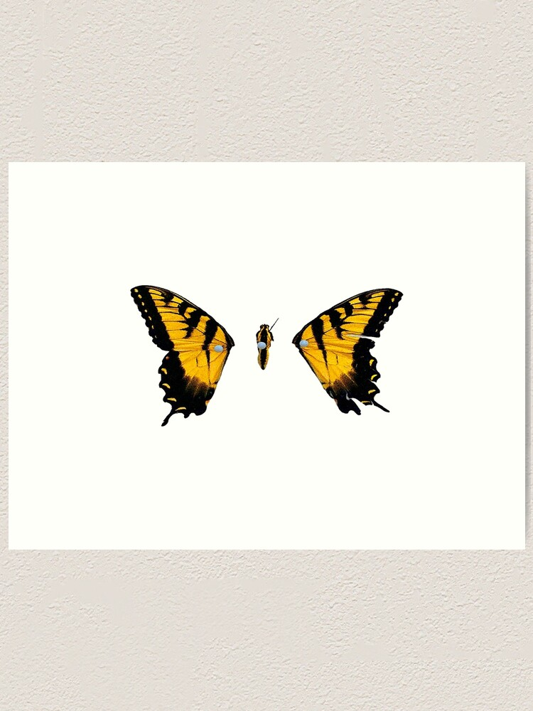 Paramore Brand New Eyes Butterfly Skinny T-Shirt SMALL