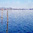 Arona: lake landscape by Giuseppe Cocco