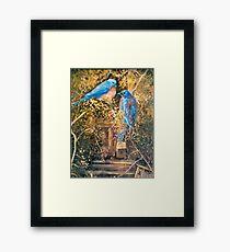 Home Again Framed Print