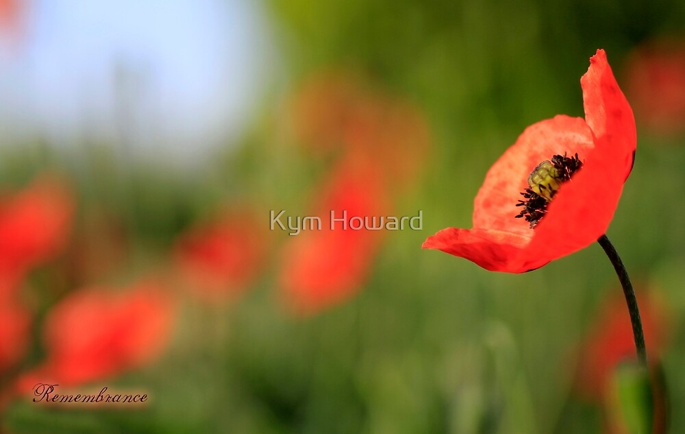 Remembrance by Kym Howard