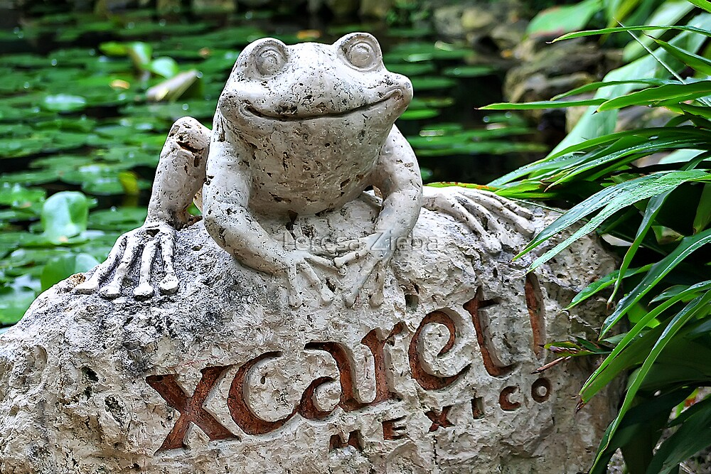 Happy Frog by Teresa Zieba