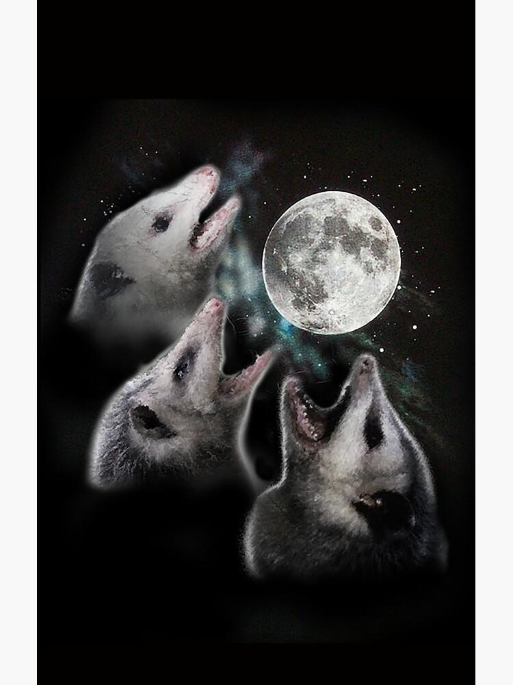 3 Opossum Mond von evilkidart