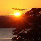 Sunrise at Black Point by Jann Ashworth