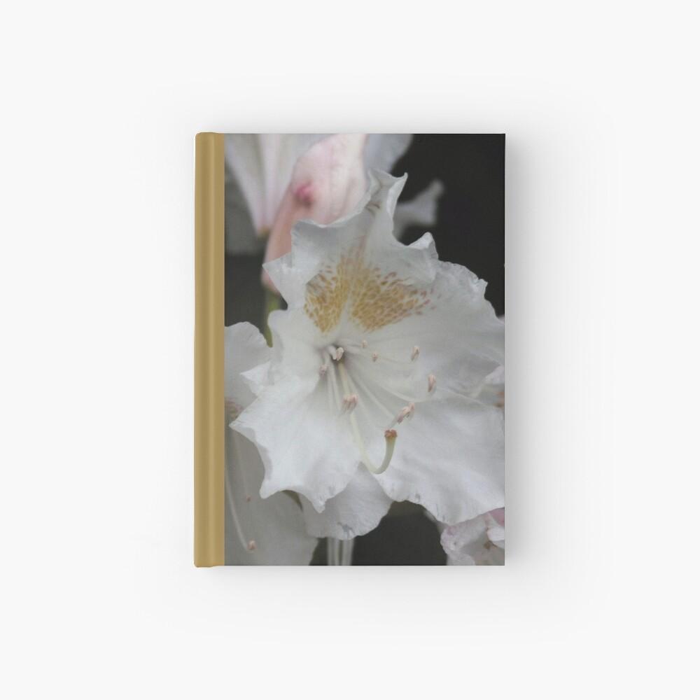White and Gold Azaleas Hardcover Journal