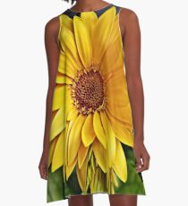 Looking into the Sun A-Line Dress