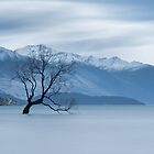 Solitary Tree by TedmBinegas