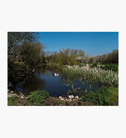 Farm Pond Photographic Print