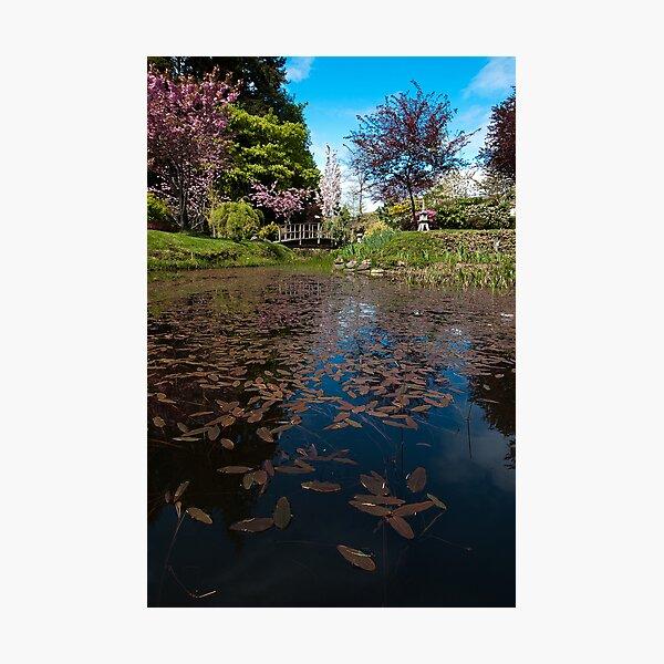 Japanese Gardens, Mayne Island, BC Photographic Print
