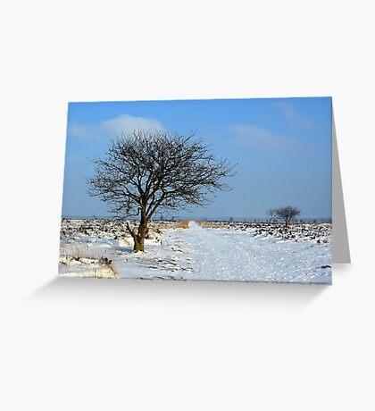 Fochteloerveen in Winter Greeting Card