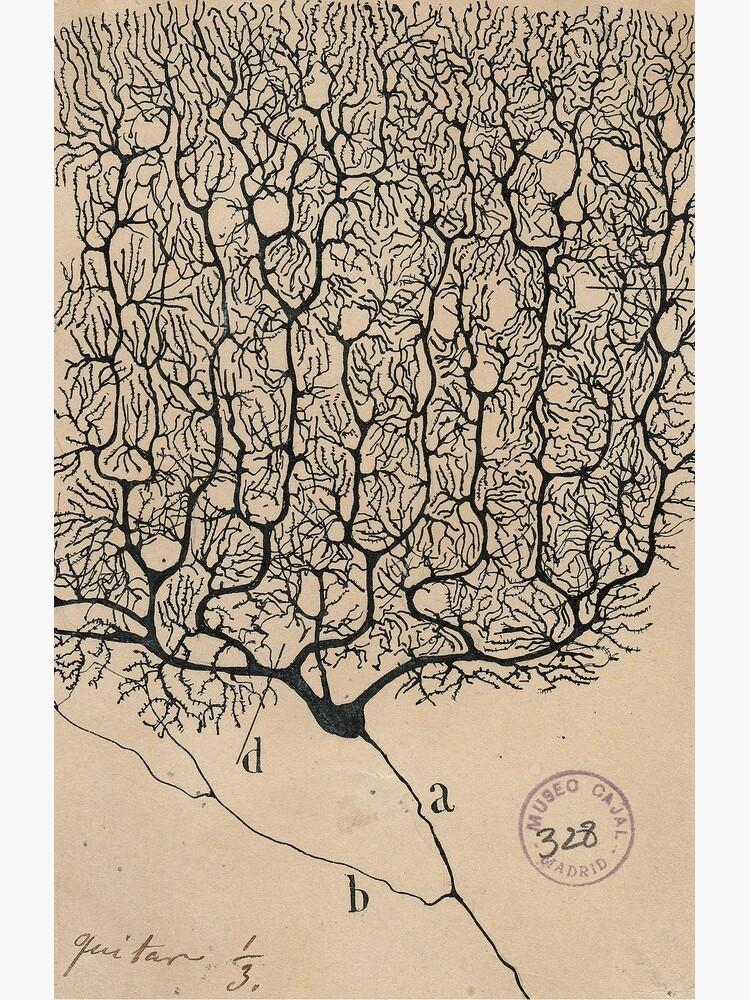 Neuron SRC by Maridac