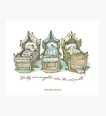 The Brambly Hedge baby mice snuggle in their cots Photographic Print