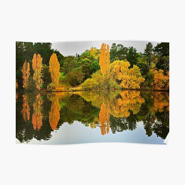 1773 Autumn reflection Poster
