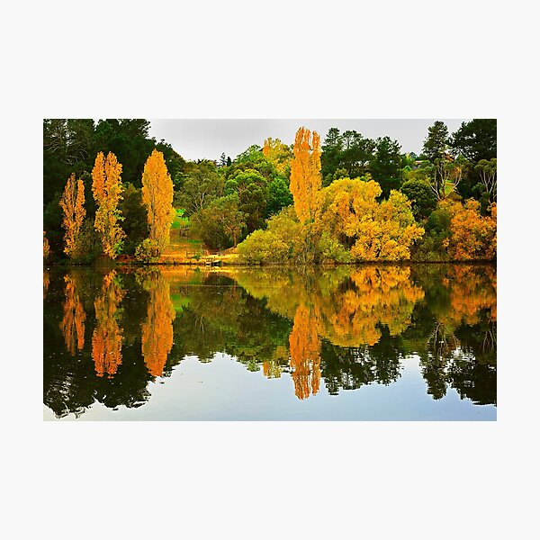 1773 Autumn reflection Photographic Print