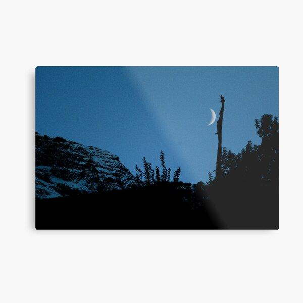 Prayers to the moon Metal Print