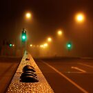Fog by dodgsun
