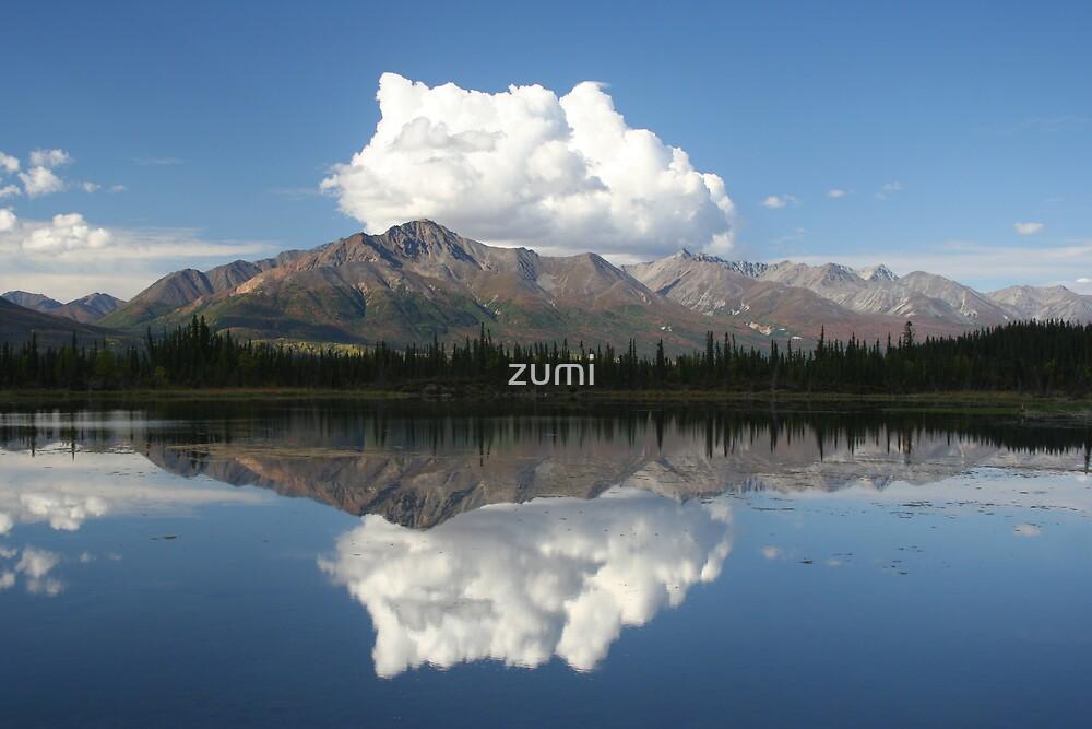 A perfect reflection by zumi