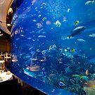 Burj Al Arab - Al Mahara Restaurant by David Clarke