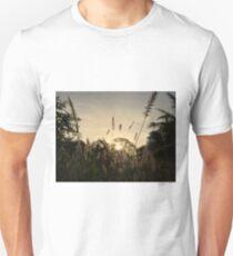 Yellow African Grasses At Sunset - Kenya Africa Unisex T-Shirt