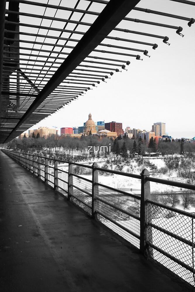 Winter in Edmonton by zumi