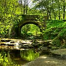 The Bridge at May Beck by Trevor Kersley