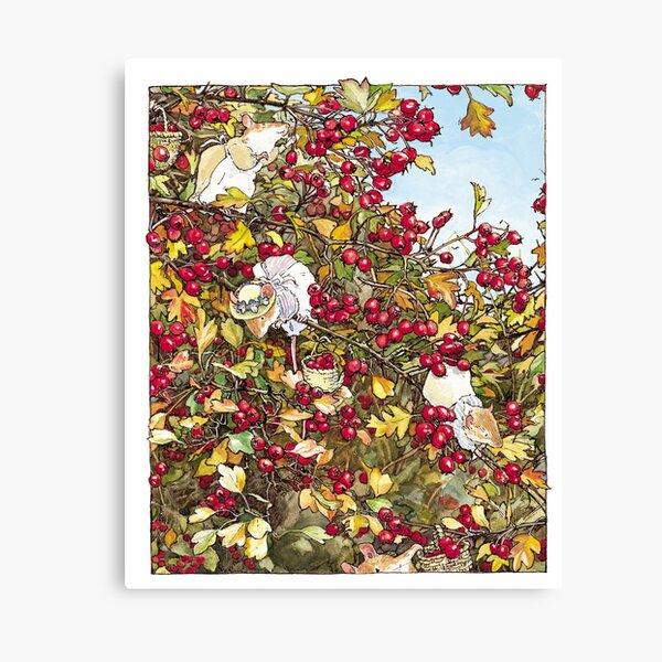 The Blackthorn Bush Canvas Print